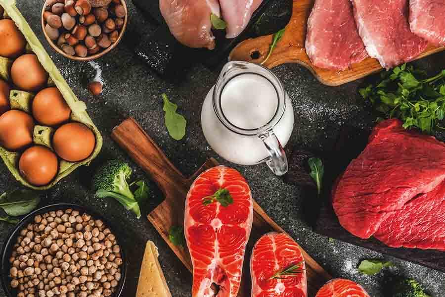 2- Diet Protein